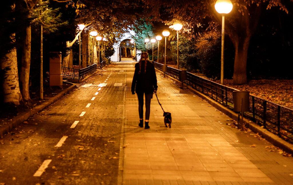 Sådan passer du på din hund i vintermørket